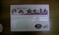 ソルクシーズ 1.JPG