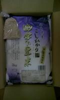 ソルクシーズ 2.JPG